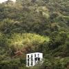 1-Jungle-house-Raymond_caribbean-cube-home