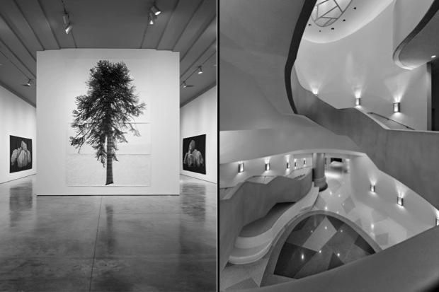 museum_tree