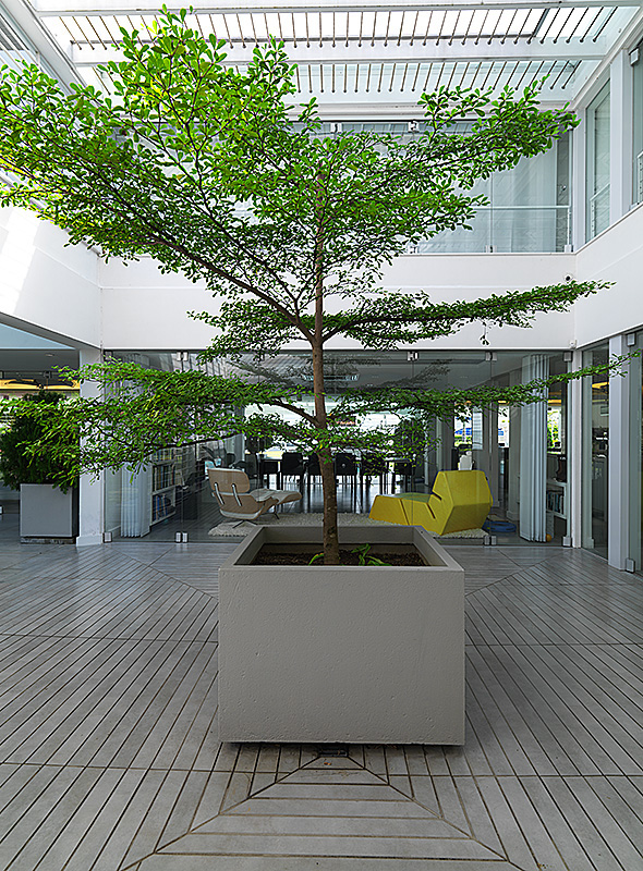 The double height central open air courtyard at the centre of the house