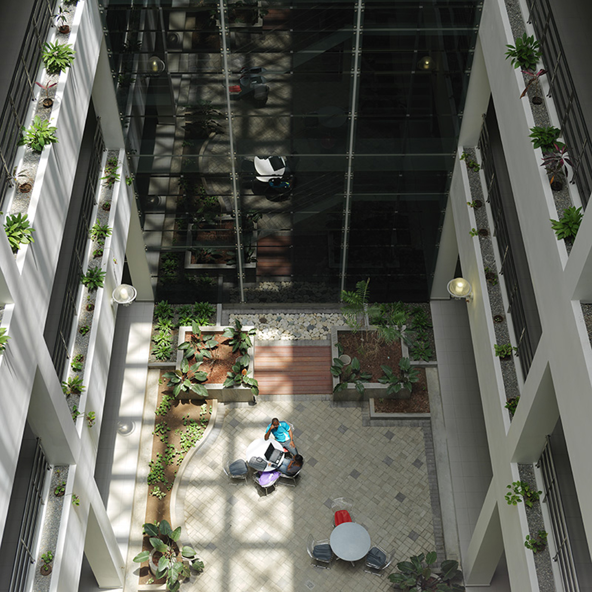 medical-sciences-facility-atrium