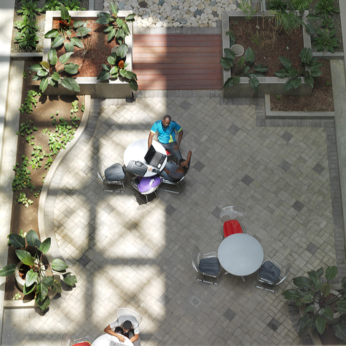 social space illuminated by skylights in the atrium