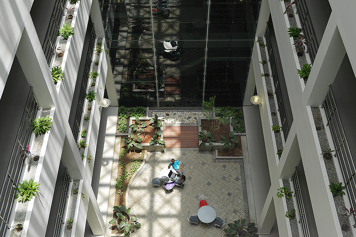 light-atrium-biomedical-science