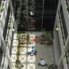 medical-science-centre-atrium-04-jpg